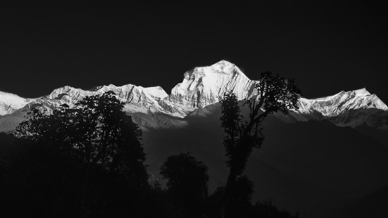 Sonnenaufgang am Dhaulagiri, vom Poon Hill im Dorf Ghorepani aus gesehen. Myagdi, West-Nepal