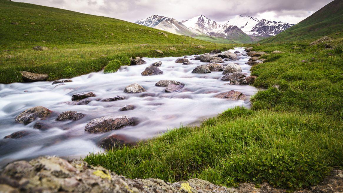 Schneeleoparden auf der Spur in Kirgisistan