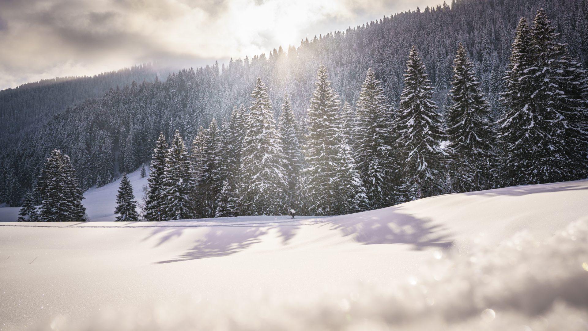 ATS-Wintershootings