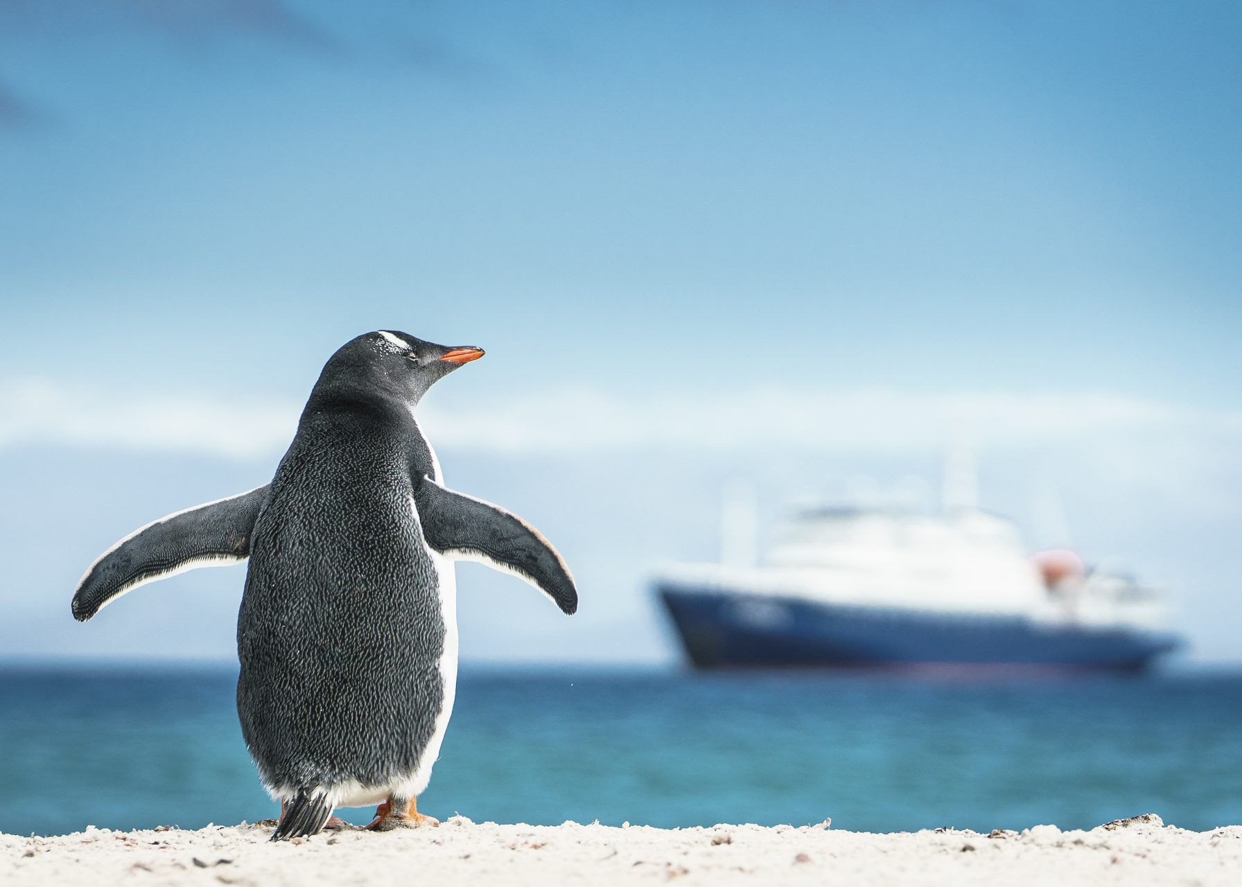 Oceanwide Expeditions