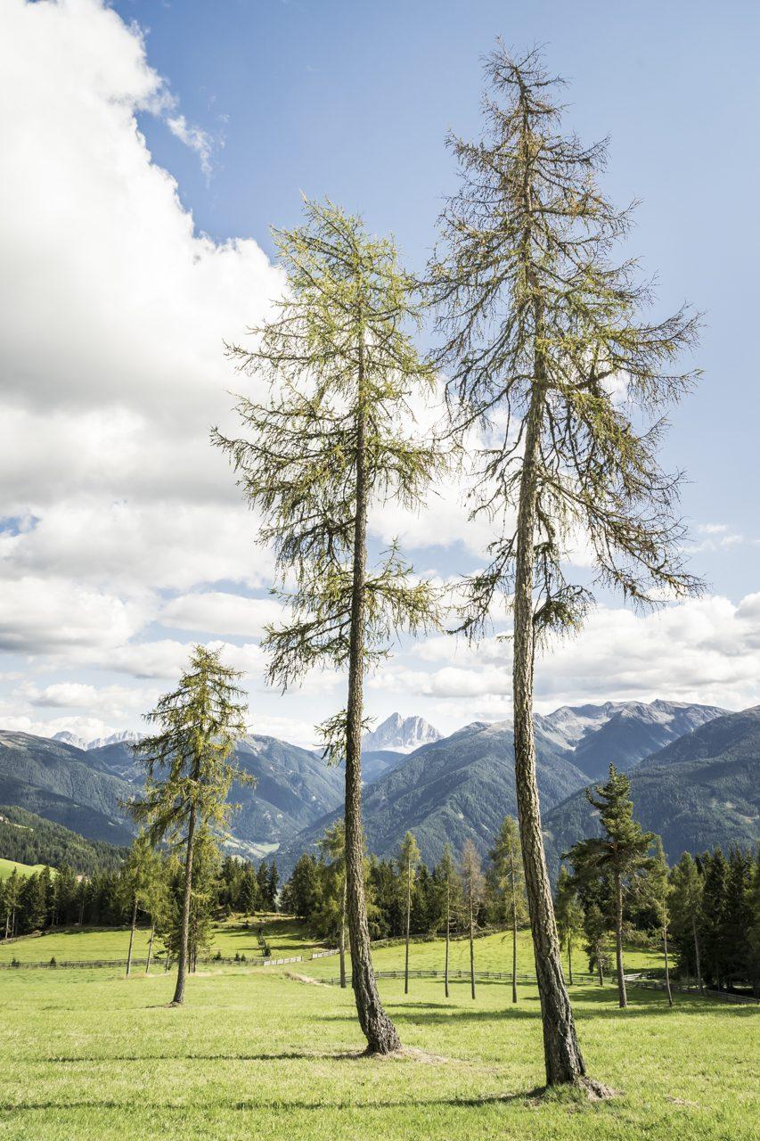 """""""Dolorama""""-Fernwanderweg, Südtirol, Italien"""