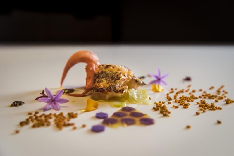 """Restaurant """"Arzak"""" von Starkoch Jose Mari Arzak: gedünsteter Hummer mit frischem Blütenpollen und blauem Wabenhonig"""
