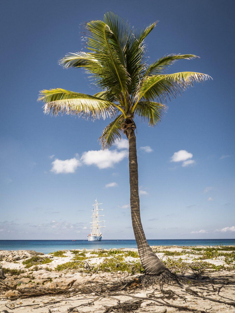 """Star Flyer"" vor Little Cayman."