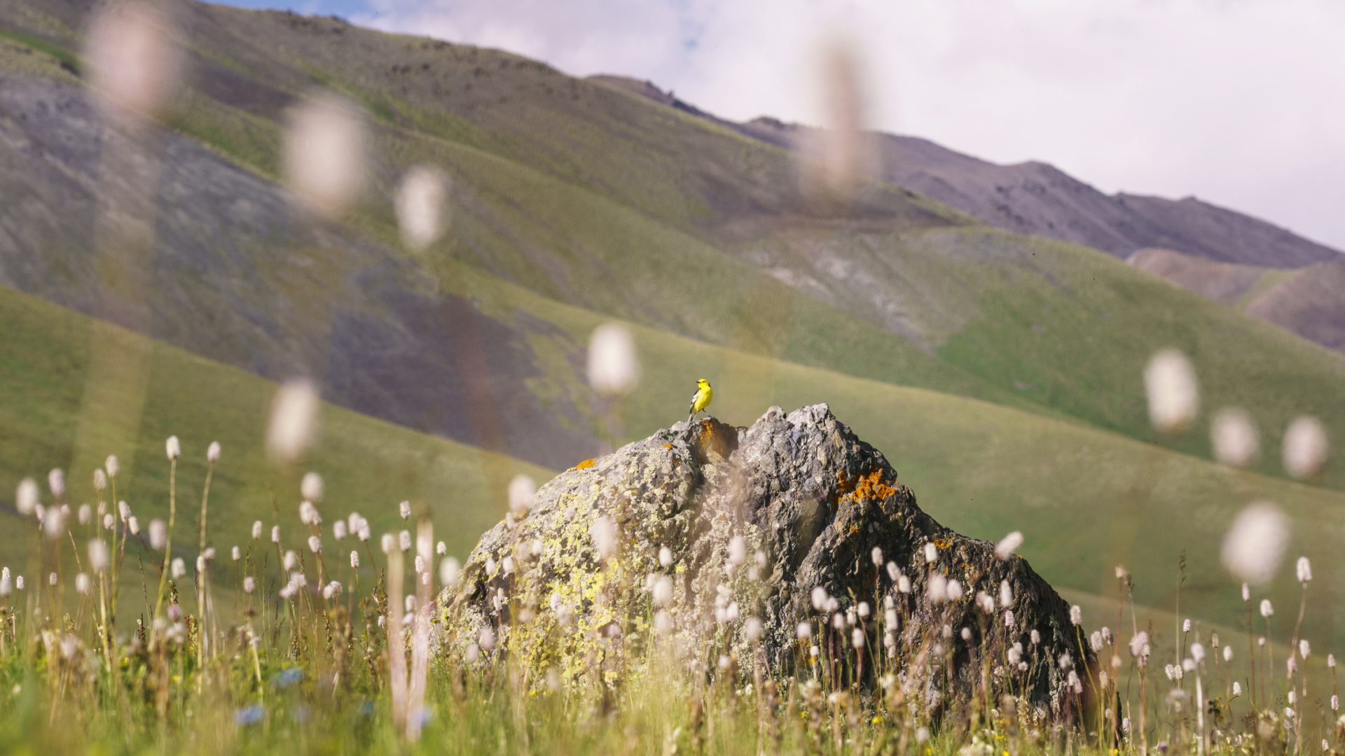 Kirgisistan