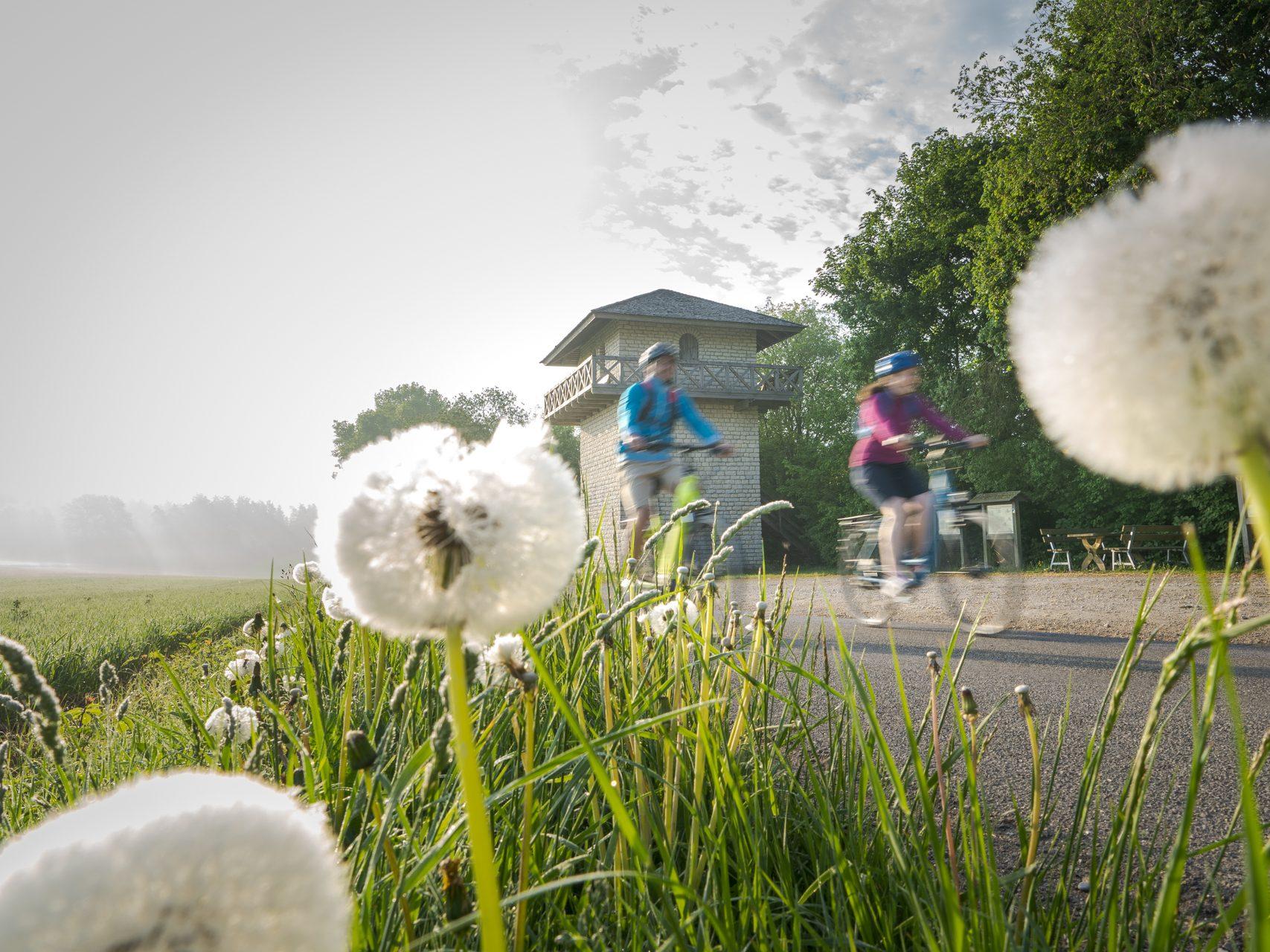 Radfahren und Wandern Altmühltal